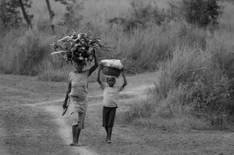 Valeurs « africaines » : un formidable potentiel