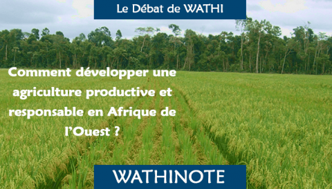 Les agricultures africaines — Transformations et perspectives
