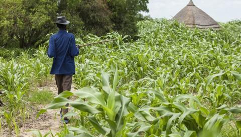 L'agriculteur, un entrepreneur comme les autres!